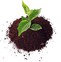 improving-hard-clay-soil.png
