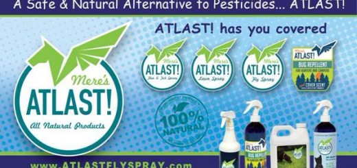 Natural bug repellents for your family, home and pets