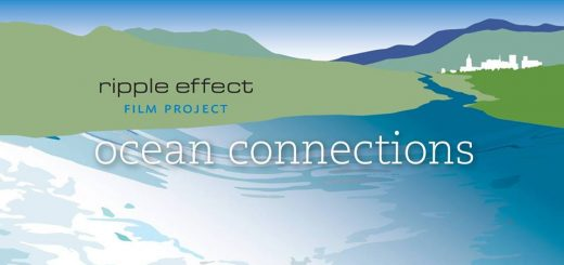 ripple effect project
