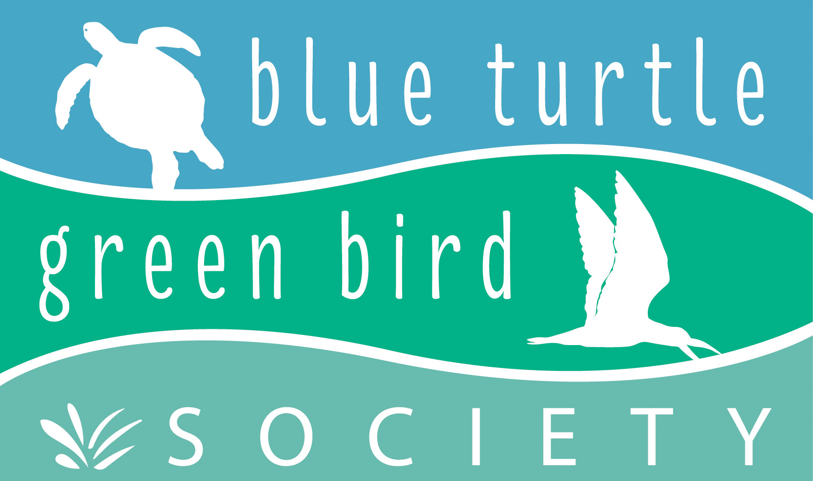 Blue Turtle Green Bird Society Cleanup