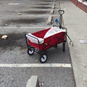 litter pickup